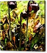 Pitcher Plant Abstraction Acrylic Print