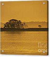 Placid Morning Acrylic Print
