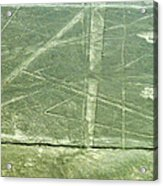 Plains Of Nazca - Spider Acrylic Print