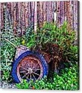 Planted Wheel Acrylic Print
