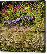 Planter Acrylic Print