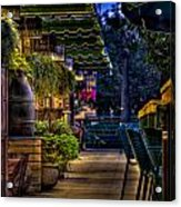 Plants And Boardwalk V Acrylic Print