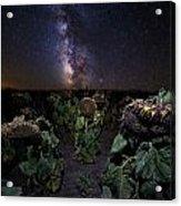 Plants Vs Milky Way Acrylic Print