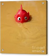 Plastic Fish In Some Polluted Water. Acrylic Print