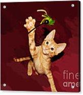 Play Time Acrylic Print by Lynda Dawson-Youngclaus