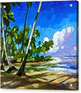 Playa Bonita Acrylic Print by Douglas Simonson
