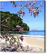 Playa Espadillia Sur Manuel Antonio National Park Costa Rica Acrylic Print
