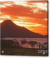 Playa Matapalo Costa Rica Acrylic Print