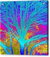 Playful Colors 4 Acrylic Print