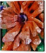 Playful Poppies 1 Acrylic Print