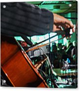 Playing The Cello  Acrylic Print