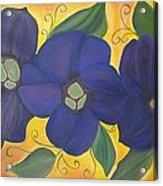 Please Me Purple Passion Acrylic Print