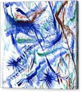 Plume Bleues Acrylic Print