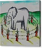 Plight Of Elephants Acrylic Print