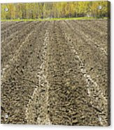 Plowed Spring Farmland Ready For Planting In Maine Acrylic Print