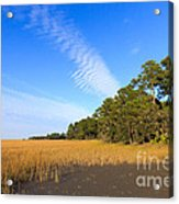 Pluff Mud And Salt Marsh At Hunting Island State Park Acrylic Print