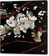 Plum Blossoms And Anna's Hummingbird Acrylic Print