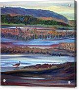 Plum Island Salt Marsh Sunset Acrylic Print