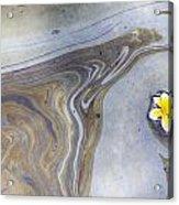 Plumeria In Oil Slick- Uss Arizona Memorial Shipwreck Site Acrylic Print