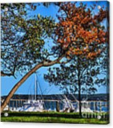 Plymouth Harbor In Autumn Acrylic Print