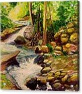 Pocantica River Rapids Acrylic Print