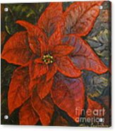 Poinsettia/ Christmass Flower Acrylic Print by Elena  Constantinescu