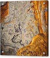 Point Lobos Abstract 12 Acrylic Print