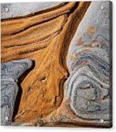 Point Lobos Abstract 5 Acrylic Print