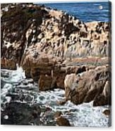 Point Lobos Coast 2 Acrylic Print