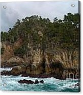 Point Lobos Coastal View Acrylic Print