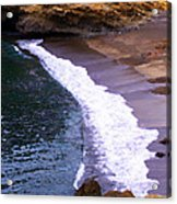 Point Lobos Acrylic Print by Ron Regalado