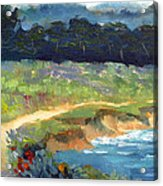 Point Lobos Trail Acrylic Print