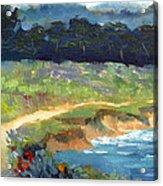 Point Lobos Trail Acrylic Print by Karin  Leonard