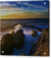 Point Lobos Two Acrylic Print