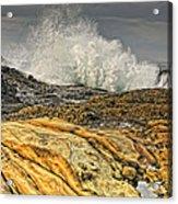 Point Lobos Wave Acrylic Print