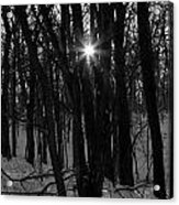 Point Of Light In Black And White Acrylic Print