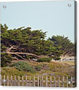 Point Pinos Lighthouse Pacific Grove California Acrylic Print
