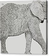 Pointillism Elephant Acrylic Print by Terence Leano