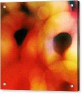 Polaris No. 2  Acrylic Print
