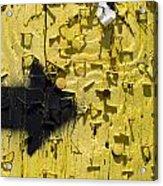 Pole Art 36 Acrylic Print
