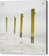 Poles Acrylic Print