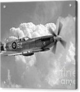 Polish Spitfire Ace Bw Acrylic Print