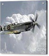 Polish Spitfire Ace Acrylic Print