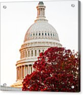 Politics Seeing Red Acrylic Print by Greg Fortier
