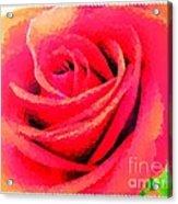 Polka Dot Beautiful Rose Acrylic Print