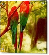New Orleans Polly Wants Two Crackers At New Orleans Louisiana Zoological Gardens  Acrylic Print