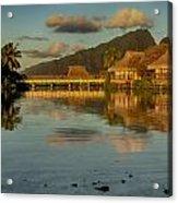 Polynesian Art Acrylic Print