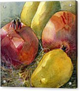 Pomegranates And Pears Acrylic Print