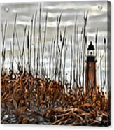 Ponce Inlet Lighthouse In Sea Grass Acrylic Print