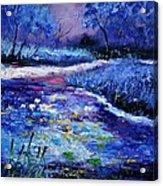 Pond 563111 Acrylic Print